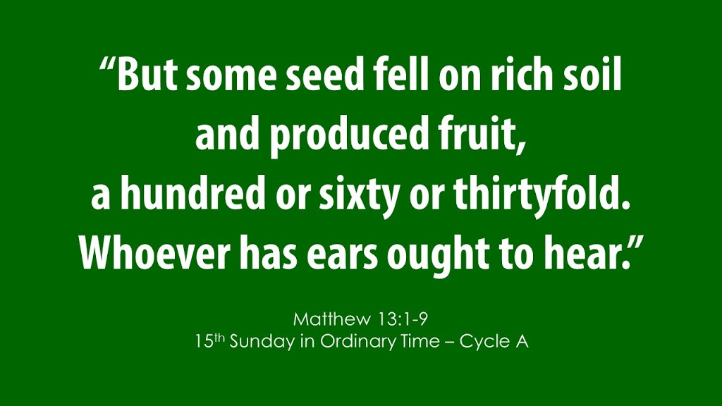 Fifteenth Sunday in Ordinary Time – July 12, 2020